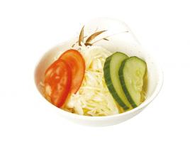 E16 Salade de choux
